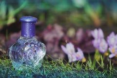Flores de vidro do açafrão da mola da garrafa de perfume Imagem de Stock