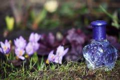 Flores de vidro do açafrão da mola da garrafa de perfume Imagens de Stock