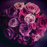 Flores de Weding Rosas cor-de-rosa e vermelhas Cores do vintage Fotografia de Stock Royalty Free