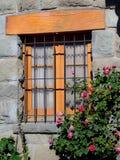 Flores de Windows Imagenes de archivo