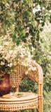 Flores debajo en el jardín debajo de la lluvia del verano imagen de archivo libre de regalías