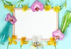 Flores decoradas quadro do verão da foto do rosa do modelo imagem de stock royalty free