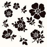 Flores decorativas Imagenes de archivo