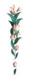 Flores decorativas abstractas Fotografía de archivo libre de regalías