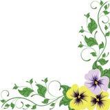 Flores decorativas de la belleza aisladas en blanco Fotografía de archivo