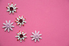 Flores decorativas en un fondo rosado Fotos de archivo