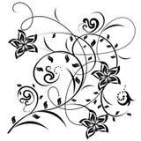 Flores decorativas no fundo branco Fotos de Stock