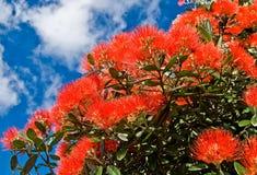 Flores del árbol de navidad Imágenes de archivo libres de regalías