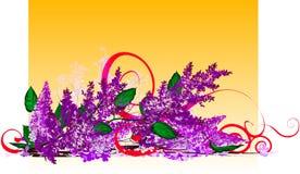 Flores del árbol, lila Imagen de archivo libre de regalías