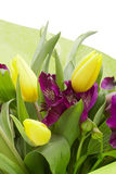 Flores del Alstroemeria imagen de archivo libre de regalías
