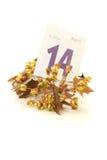 Flores del arce con la hoja del calendario Fotos de archivo libres de regalías