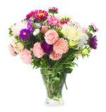 Flores del aster Imagen de archivo