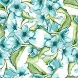 Flores del azul del flor Imágenes de archivo libres de regalías