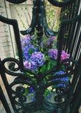 Flores del balcón Foto de archivo