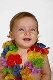 Flores del bebé Foto de archivo libre de regalías