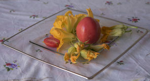 Flores del calabacín, ingredientes para cocinar italiano Imagen de archivo libre de regalías