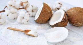 Flores del coco y del algodón Imagen de archivo libre de regalías