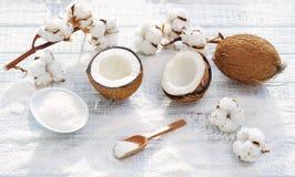 Flores del coco y del algodón Imagenes de archivo
