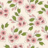 Flores del colorfull de la vendimia Imagen de archivo libre de regalías