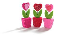 Flores del corazón del amor Imagen de archivo