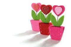 Flores del corazón del amor Imagen de archivo libre de regalías