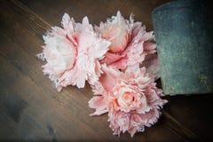 Flores del cordón foto de archivo libre de regalías