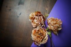 Flores del cordón imagenes de archivo