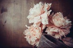 Flores del cordón foto de archivo