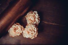 Flores del cordón en fondo oscuro foto de archivo