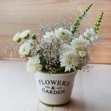 Flores del crisantemo en un pote decorativo Fotografía de archivo