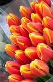 Flores del día de fiesta Fotos de archivo
