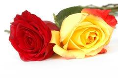 Flores del día de tarjeta del día de San Valentín Fotos de archivo