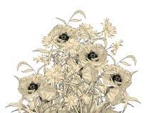 Flores del dibujo de la mano del lápiz de la acuarela Fotos de archivo