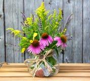 Flores del Echinacea y de la solidago Foto de archivo libre de regalías