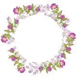 Flores del ejemplo de la acuarela, peonías pintadas de la púrpura del ramo stock de ilustración