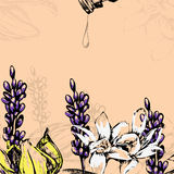Flores del ejemplo del vector para el aceite esencial stock de ilustración