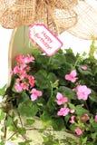 Flores del feliz cumpleaños Imágenes de archivo libres de regalías