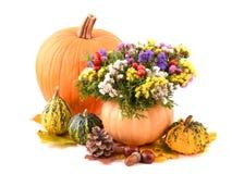 Flores del florero y del otoño de la calabaza para el día de fiesta foto de archivo libre de regalías