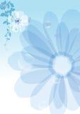 Flores del fondo Fotos de archivo