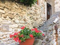 Flores del geranio contra la casa de piedra imagenes de archivo