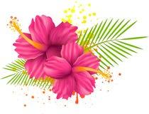Flores del hibisco en fondo del grunge Imagen de archivo libre de regalías