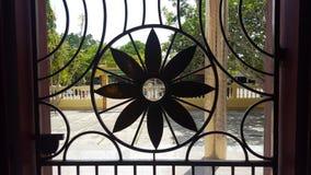 Flores del hierro que son hermosas, durable fotografía de archivo
