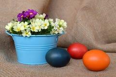Flores del huevo y del resorte de Pascua Fotos de archivo libres de regalías