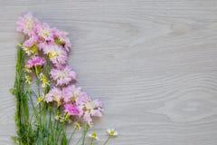Flores del jardín en fondo de madera gris Fotografía de archivo libre de regalías