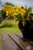Flores del jardín en jardín Imágenes de archivo libres de regalías