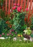 Flores del jardín, macizo de flores Imágenes de archivo libres de regalías