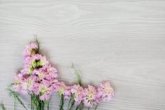 Flores del jardín sobre fondo de madera gris Fotos de archivo libres de regalías