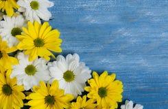Flores del jardín sobre fondo de madera pintado de la tabla contexto con el espacio de la copia Flores hermosas en fondo de mader Imagenes de archivo