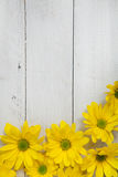 Flores del jardín sobre fondo de madera pintado de la tabla contexto con el espacio de la copia Flores hermosas en fondo de mader Fotografía de archivo libre de regalías