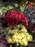 Flores del lirio de cala Imágenes de archivo libres de regalías